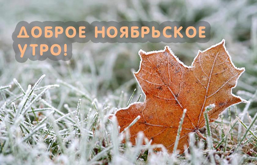 dobrogoutra_ru_837.jpg