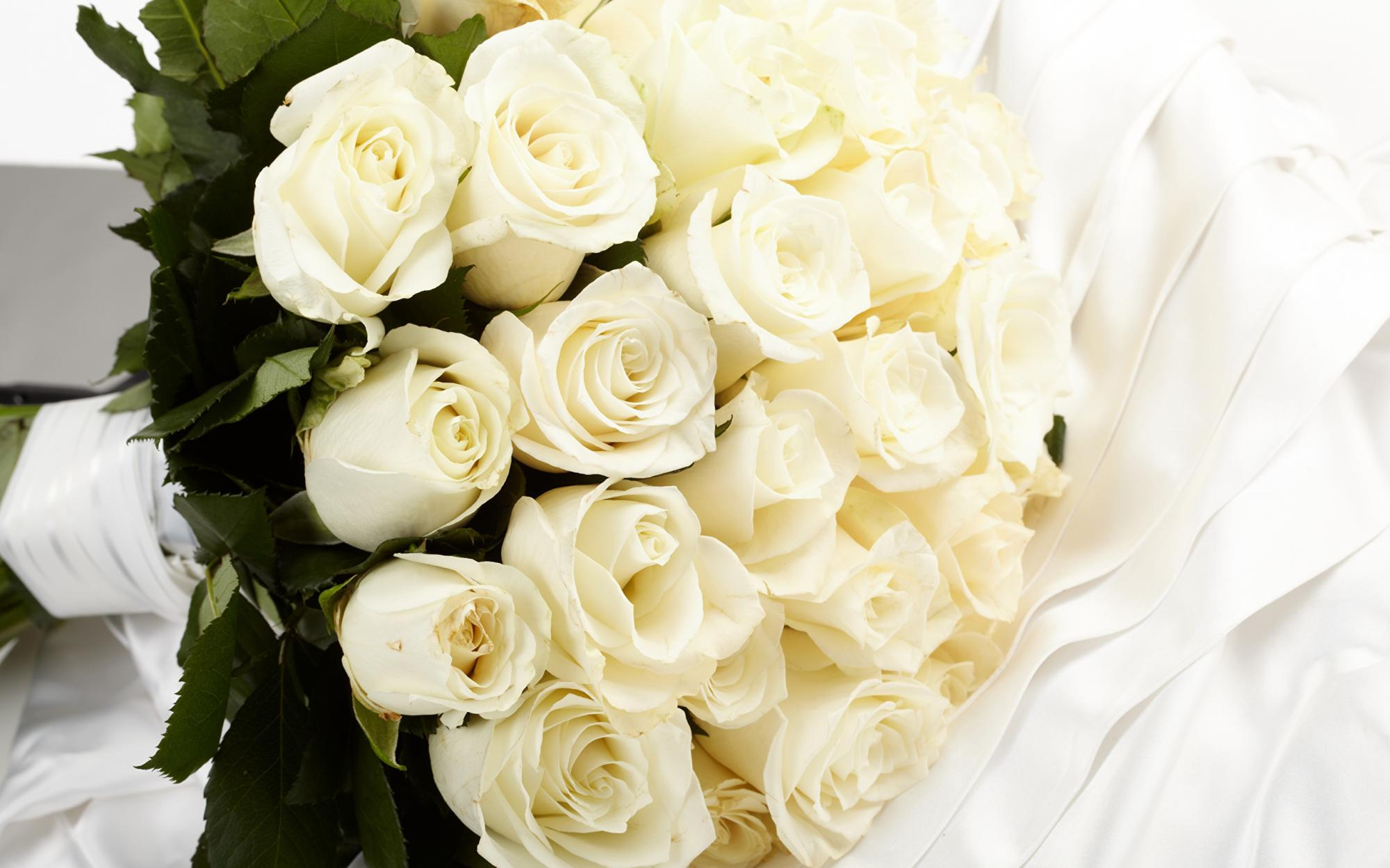Roses_Bouquets_White_536100_2560x1600.jpg